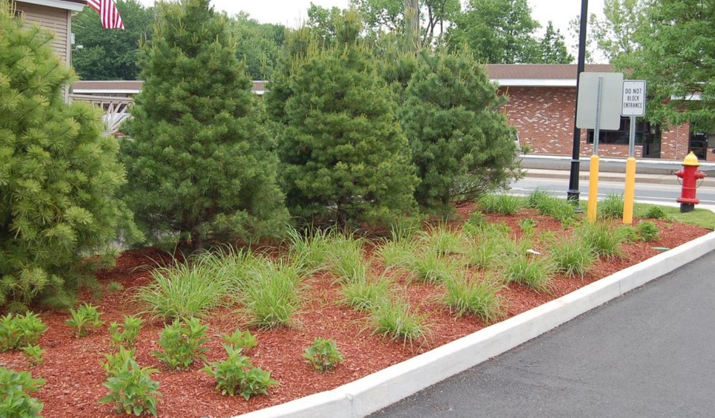 Parking Lots & Landscaping